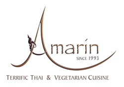 Amarin Terrific Thai & Vegetarian Cuisine
